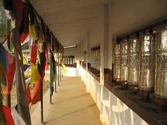 IMG_2499 (Sasha India) Tags: india buddhism karnataka indien hindistan buddhismus 印度 भारत littletibet הודו 인도 இந்தியா الهند буддизм هندوستان индия ινδία індія карнатака հնդկաստան אינדיע อินเดีย ભારત ინდოეთში