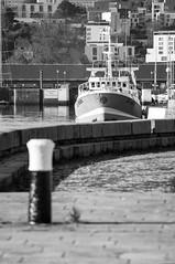 (lolo2302) Tags: nikon bateau peche yannick 70200mm cherbourg pcheurs d90 chalutier