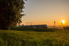 19/07/2016 | Willemsdorp (SB-2013) Tags: ns slt reizigers nsr sprinter willemsdorp sunrise