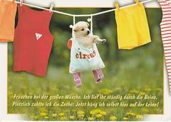 PS-Kessy-2707 (Tweeling17) Tags: clothesline clotheslines washinglines laundry