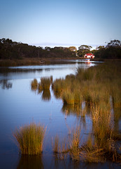 Anglesea River (Trace Connolly) Tags: australia australian anglesea canon7d coast environmentalphotography greatoceanroad golden green gold holiday landscape naturephotography nature orange reflections red sigma sunset trees surfcoast vacation water river peace peacefull walking fishing hiking sunshine bright sigma1750f28exdcoshsm naturaleza leaves cabin reeds angleseariver victoria blue bluesky boatsheds