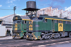 Old and new at Mile End (Bingley Hall) Tags: transport train transportation rail railway railroad locomotive engine australia southaustralia adelaide mileend locodepot diesel an anr australiannational alco emd dl500b 251b 965 railpage:class=53 railpage:loco=965 rpausa930class rpausa930class965 railpage:livery=10 bl35 railpage:class=39 railpage:loco=bl35 rpausablclass rpausablclassbl35 kodachrome