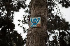 monster (futoshita) Tags: leica m240 summicron 50mm monstre monster street painting peinture rue