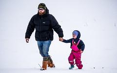 Thanks Dad (NOL LUV DI) Tags: snow napier hawkesbay