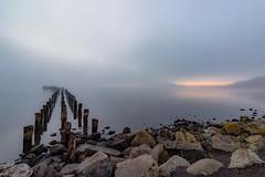 Puerto Natales (Homayra Oyarce G.) Tags: chile patagonia paisajes muelle paisaje puertonatales magallanes surdechile austral sudamrica surdelmundo senodeultimaesperanza regindemagallanesylaantrticachilena provinciadeultimaesperanza eosrebelt3i