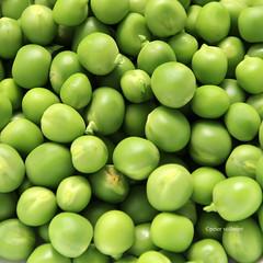 11-IMG_3374 (hemingwayfoto) Tags: ackerbau biologisch erbse frisch geffnet gemse grn hlsenfrucht landwirtschaft lebensmittel markt nahrung nahrungsmittel natur pflanzen pflanzlich produkt roh ss vegetarisch