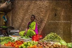 Market.  Madurai (Claire Pismont) Tags: pismont clairepismont vegetable veggies woman women light lifeinindia life inde india asia asie travel travelphotography streetshot street streetphotography tamilnadu mamallapuram madurai shadow sari seller market