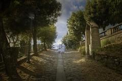 la strada verso il santuario (eLe_NoiR) Tags: elenoir santuario cortona suore viacrucis alberi salita allaperto