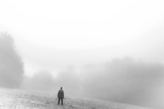 astray? (lukasenko.o) Tags: draw distance bw solo nature forest stand alone ahead fog contemplative