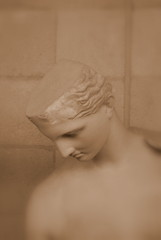 Classical Statues (Chris Draper) Tags: head bust female classical greek roman statue statues cambridge museumofclassicalarchaelogy naturallight soft softlight sepia victorian cast casts light shadow historical archaeology