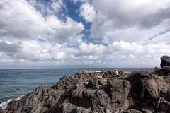 Peg on Coffee Perch (abaerst) Tags: coffeeperch coffeewalk kapalua lahaina hawaii unitedstates us