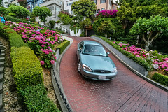 Lombard Street, San Francisco (Phil Marion (50 million views - thanks)) Tags: philmarion 5photosaday beauty beautiful travel vacation candid beach woman girl boy wedding people explore  schlampe      desnudo  nackt nu teen     nudo   kha thn   malibog    hijab nijab burqa telanjang  canon  tranny  explored nude naked sexy  saloupe  chubby young nubile slim plump sex nipples ass hot xxx boobs dick dink