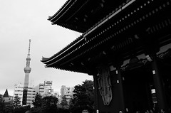 L1000523 (Zengame) Tags: leicat cc creativecommons japan leica summicron summicron235 tokyo  235  t     jp