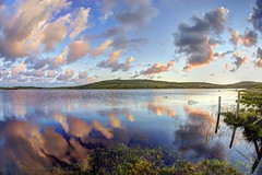Bubble (pauldunn52) Tags: sunrise reflection loch host north uist scotland outer hebrides