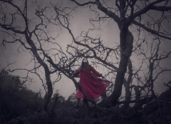 Outcast (Maren Klemp) Tags: fineartphotography fineartphotographer color red dress dreamy fairytale surreal selfportrait dream painterly expressivephotography nature naturallight trees thewoods woman selfportraits branches prints marenklemp movement conceptual outdoors landscape portrait artwork