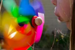 9.4.15 - Windmill (Pittypomm) Tags: blur windmill wheel rainbow pin blowing coloured