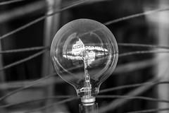 MyCanon Port Adelaide 088 (CeeJayGee Photo) Tags: blackandwhite bw reflection lightbulb bulb blackwhite focus monotone filament mycanon canoncollective canoncollectiveportadelaidecanon7d