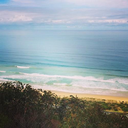 Surf's up 🏄
