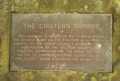 The Chiltern Summit (B J Images) Tags: bear wood b trees tree bluebells j countryside woods ben side chilterns buckinghamshire country carving jackson badger owl bucks bluebell carvings owls chiltern wendover gruffalos gruffly