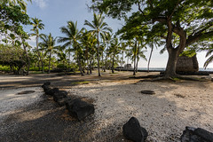 Paradise! (nclcocco) Tags: ocean sky usa tree clouds canon hawaii rocks july palmtrees hi bigisland 2014 pacificislands konacoast puuhonuaohonaunaunationalhistoricalpark hawaiiisland 5dmkiii canon5dmarkiii 5dmarkiii nclcocco nicolacocco