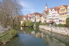 Wahlheimat Tübingen (mellane.karin) Tags: neckar tübingen platanenallee