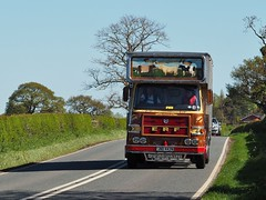 ERF LV cattle Truck - JND 442N (Ben Matthews1992) Tags: road old classic animal truck vintage wagon cattle cheshire transport run historic lorry commercial 1975 vehicle motor erf preserved livestock transporter lv preservation waggon haulage 2015 a530 driveitday jnd442n cskirk