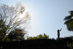 DS7_6683.jpg (d3_plus) Tags: street sky plant flower macro nature japan walking spring scenery bokeh outdoor fine daily rainy bloom  streetphoto toyama  tamron gw    dailyphoto    thesedays hokuriku   fineday    tamronspaf2875mmf28 2875    2875mmf28   tamronspaf2875mmf28xrdildasphericalif tamronspaf2875mmf28xrdild d700   nikond700  nikonfxshowcase