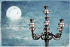 unclose your mind (1crzqbn) Tags: blue sunlight moon color birds shadows textures lamppost vaticancity piazzasanpietro hss 1crzqbn