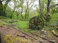 Talyllyn Railway 19th May 2015 (74) (Gareth Lovering Photography 3,000,594 views.) Tags: wales railway trains olympus narrow omd gwynedd lovering em1 talyllyn tywyn gorsaf abergynolwyn dolgoch rhydyronen
