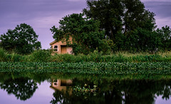 Little House on the Bayou (fuzzy_dunlop_nola) Tags: blue light sky cloud house reflection green water clouds reflections landscape outdoors evening louisiana cloudy dusk country samsung swamp shack bluehour scape 45mm waterscape southlouisiana hwy90 desallemands mirrorless nx500 samsungnx45mmf18 samsungnx500