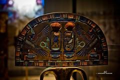 Ostrich feather fan - Rear (max.fontanelli) Tags: king treasure tomb egypt re tesoro tomba egitto oro tutankhamun pharaon golg faraone