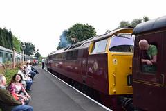 Bridgnorth (DarloRich2009) Tags: svr severnvalleyrailway shropshire worcestershire bridgnorth bridgnorthstation bridgnorthrailwaystation class52 d1015 westernchampion western d1010 westerncampaigner