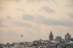 Istanbul Evening 7 (Allison Mickel) Tags: nikon d7000 adobe lightroom edited turkey sunset landscape istanbul