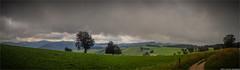 _schauinsland (l--o-o--kin thru) Tags: cycling schwarzwald schauinsland pass freiburg pano panorama rad landscape landschaft blackforest