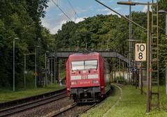 0689_2016_07_02_Baunatal_Rengershausen_DB_101_009_schiebt_IC_Kassel_Wo_bleibt_die_Strassenbahn?_Waiting_for_a_train (ruhrpott.sprinter) Tags: ruhrpott sprinter geutschland germany nrw ruhrgebiet gelsenkirchen lokomotive locomotives eisenbahn railroad zug train rail reisezug passenger güter cargo freight fret diesel ellok hessen baunatal rengershausen korbach stellwerk db kurhessenbahn boxx can eloc elv hlbahn heb hgb mrcedispolok txl rpool sbbc 101 114 120 145 146 152 182 185 193 211 275 427 428 429 482 642 646 es64u2 rapunzel rotkäppchen dermond hansimglück dompfaff käfer schmetterling blumen outdoor logo graffiti natur