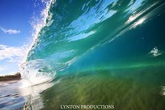 IMG_4314 copy (Aaron Lynton) Tags: canon hawaii waves barrels barrel wave maui 7d spl makena shorebreak barreling lyntonproductions