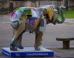 Herd of Sheffield elephant sculptures (13) (Simon Dell Photography) Tags: herdofsheffield herdof sheffield herd eliphants statues town city sculptures colorfull awsome 2016 trail see find them locations