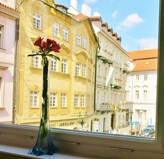 prague (Martin Pulaski) Tags: june 2016 walks walking drive passages people shops etalages windows windowshopping citytrip citylife loneliness spectacle theater