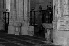 Pilas bautismales en San Esteban (Eduardo Estllez) Tags: espaa blancoynegro horizontal monocromo arquitectura europa interior religion iglesia medieval convento salamanca cristiano historia antiguo sanesteban romanico santuario piedra bautismo gotico catolico nadie capilla castillayleon edadmedia eduardoestellez estellez pilabaustimal
