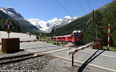 ABe 8/12 3501 / 16.07.16 (Schumny) Tags: abe 812 allegra 3501 bernina express engadin montebello kurve morteratsch gletscher bahn eisenbahn rhb rhtische schmalspur schmalspurbahn swiss schweiz alpen