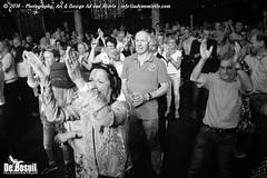 2016 Bosuil-Het publiek bij de 30th Anniversary Steady State 93-ZW