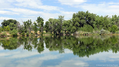 Riverbend Ponds_MIN 325_05 (luciwest) Tags: colorado fortcollins riverbendponds naturalarea pond lake water nature july 2016 movingpostcard inacoloradominute ft collins ftcollins foothills