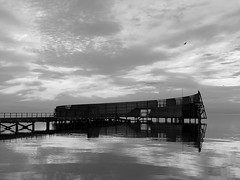P7241288new (klausen hald) Tags: summer sommer københavn copenhagen denmark danmark amager amagerstrandpark beach sea kastrupsøbad sneglen