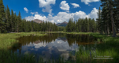 Serene Reflections (Darvin Atkeson) Tags: large panorama huge massive print gibbs dana pond reflection forest california yosemite national park halfdome elcapitan bridalveil sierra nevada mountains clouds rest valley canyon glacier darv darvin lynneal atkeson yosemitelandscapescom