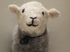 Nice to meet Ewe (sue_p32) Tags: week31 texture 52in2016 sheep herdwicksheep herdwick sedbergh thesheepfactory lyndahoward crafts handcrafts felt felting knitting wool