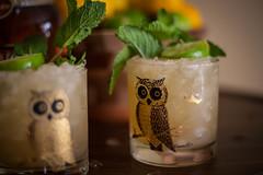 Mai Tai (Casey Fox) Tags: cocktail maitai tropicaldrink imbibe tiki rum tikidrink crushedice tikicocktail couroc courocofmonterey owl