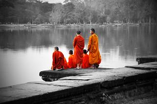 contemplation...