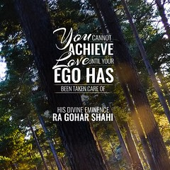 #QuoteoftheDay 'You cannot achieve love until your ego has been taken care of.' - His Divine Eminence RA Gohar Shahi (sumair_gohar) Tags: trees love nature forest ego thoughts quotes meditation spirituality innerpeace consciousness chakra revival wisewords selfdiscovery openyoureyes realization egoistic egoism openyourmind spiritualgrowth lovequotes higherconsciousness lifequotes dailyquotes goharshahi riazahmedgoharshahi quotesonlove starvetheego