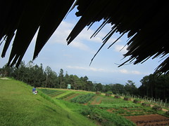 POINT OF VIEW (PINOY PHOTOGRAPHER) Tags: pov philippines davao mindanao