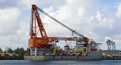 WEI LI (kees torn) Tags: rotterdam offshore weili heavylift kraanschip wilhelminahavenschiedam chanhaisalvage
